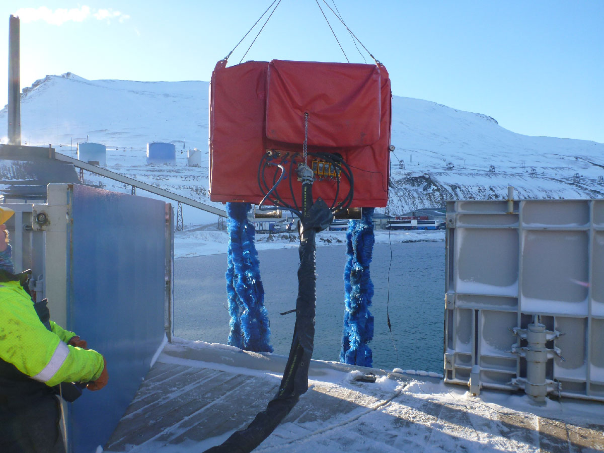 Arctic FoxTail from Henriksen on ship